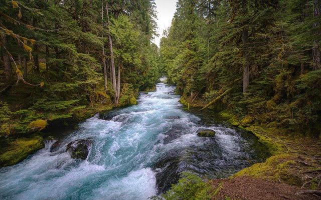 تفسير حلم النهر في المنام